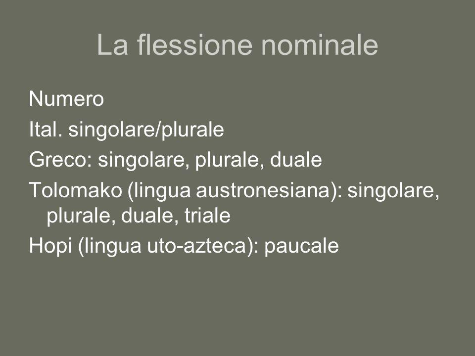 La flessione nominale Numero Ital. singolare/plurale