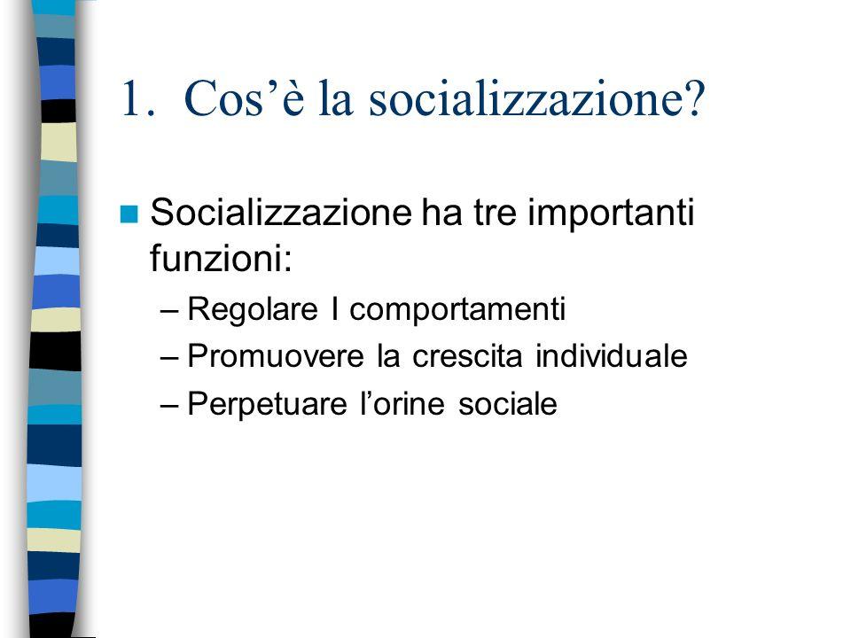 1. Cos'è la socializzazione