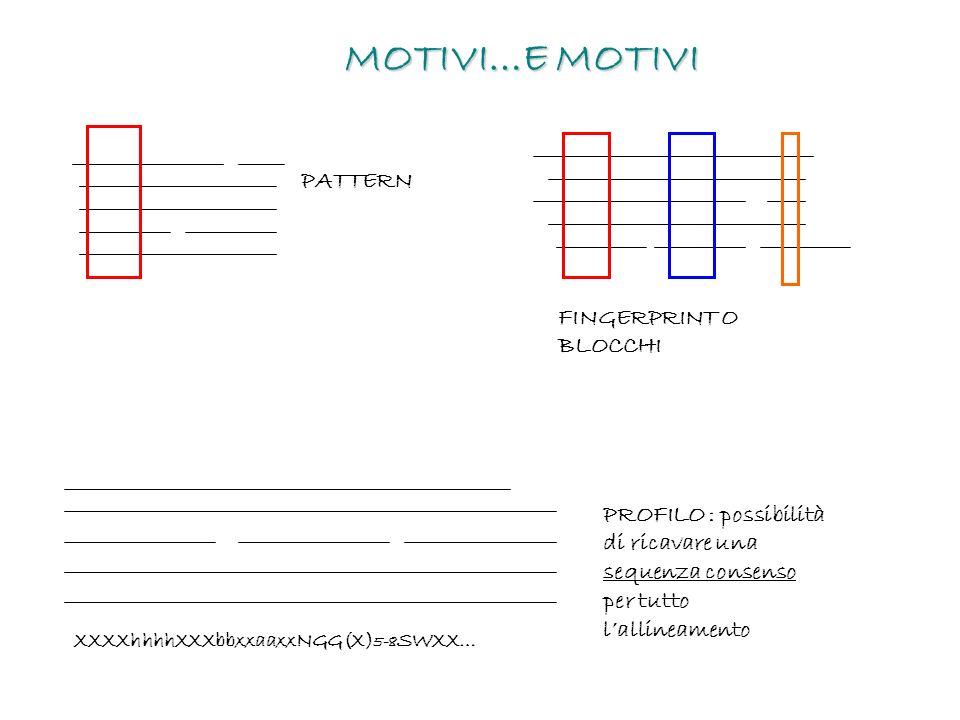 MOTIVI…E MOTIVI PATTERN FINGERPRINT O BLOCCHI