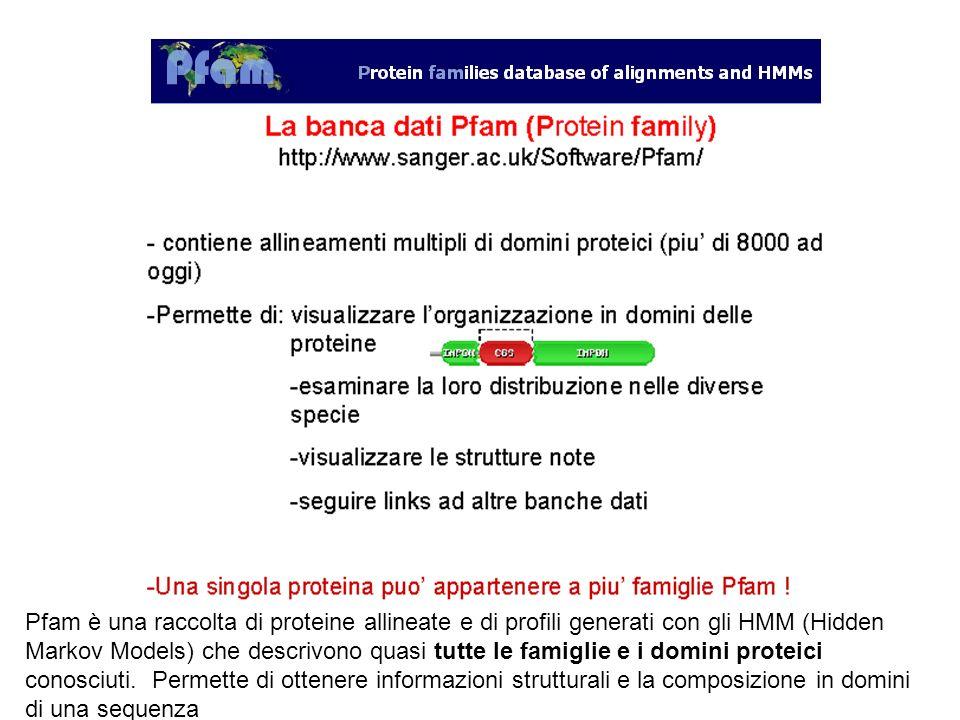 Pfam è una raccolta di proteine allineate e di profili generati con gli HMM (Hidden Markov Models) che descrivono quasi tutte le famiglie e i domini proteici conosciuti.