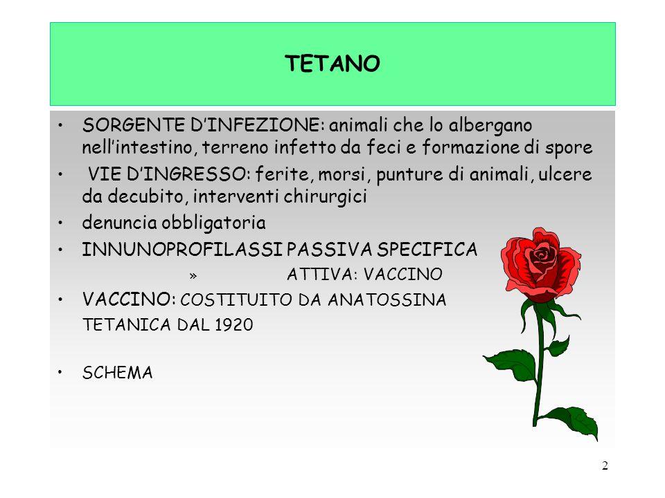 TETANO SORGENTE D'INFEZIONE: animali che lo albergano nell'intestino, terreno infetto da feci e formazione di spore.
