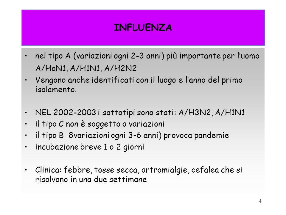 INFLUENZA nel tipo A (variazioni ogni 2-3 anni) più importante per l'uomo. A/HoN1, A/H1N1, A/H2N2.