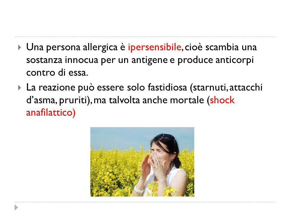 Una persona allergica è ipersensibile, cioè scambia una sostanza innocua per un antigene e produce anticorpi contro di essa.