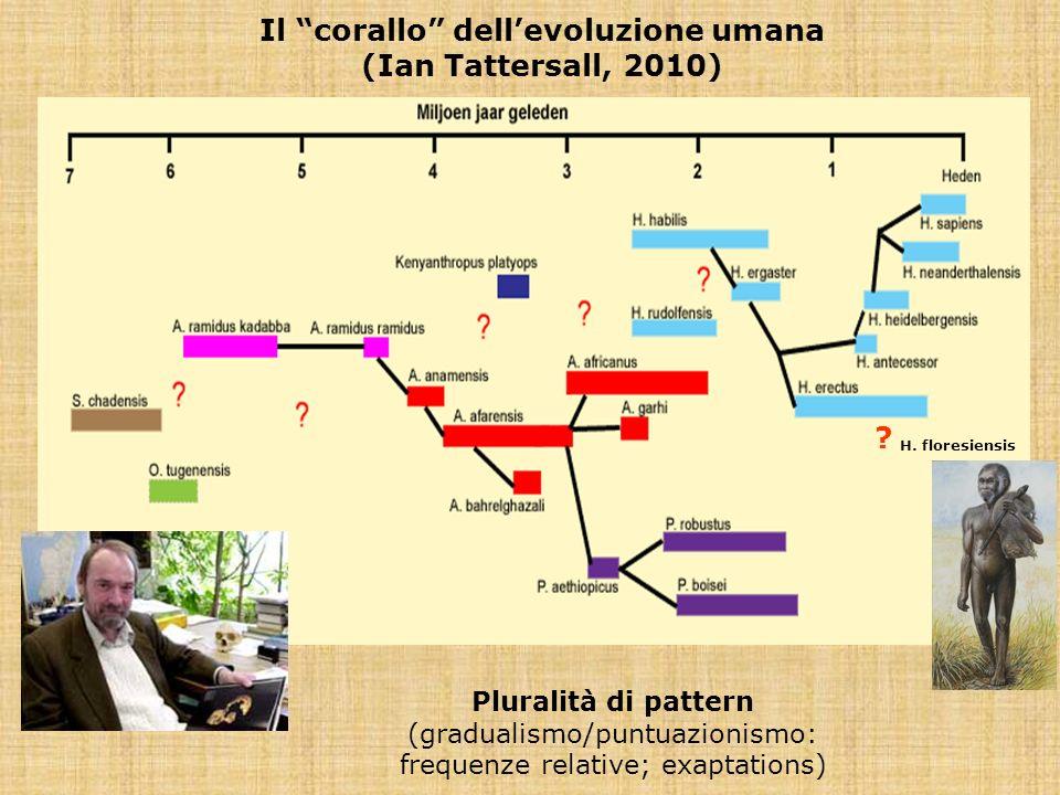 Il corallo dell'evoluzione umana (Ian Tattersall, 2010)
