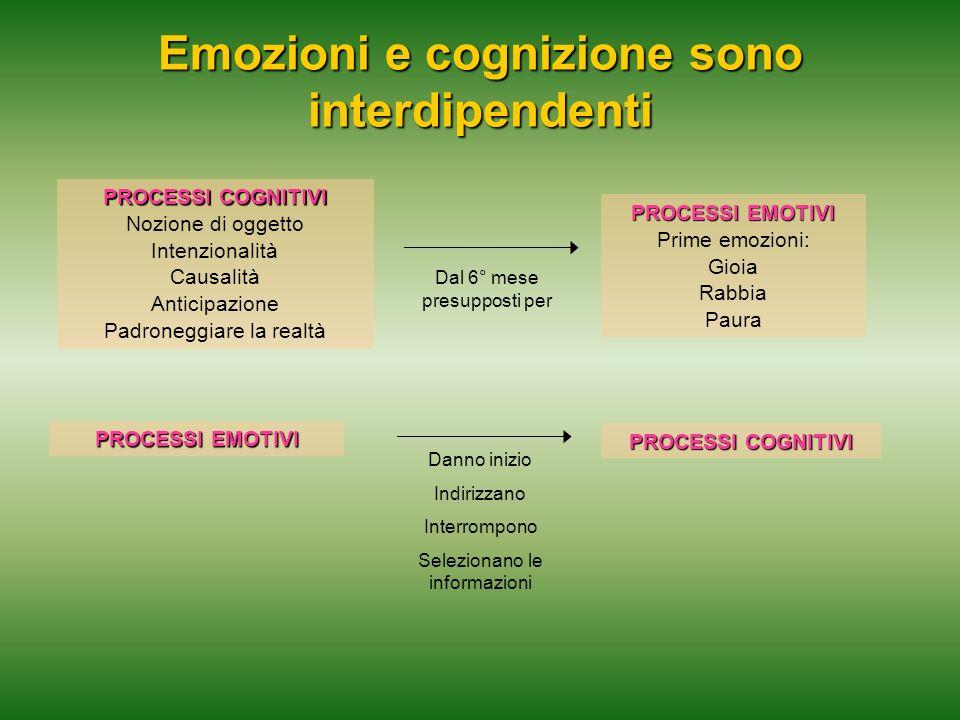 Emozioni e cognizione sono interdipendenti