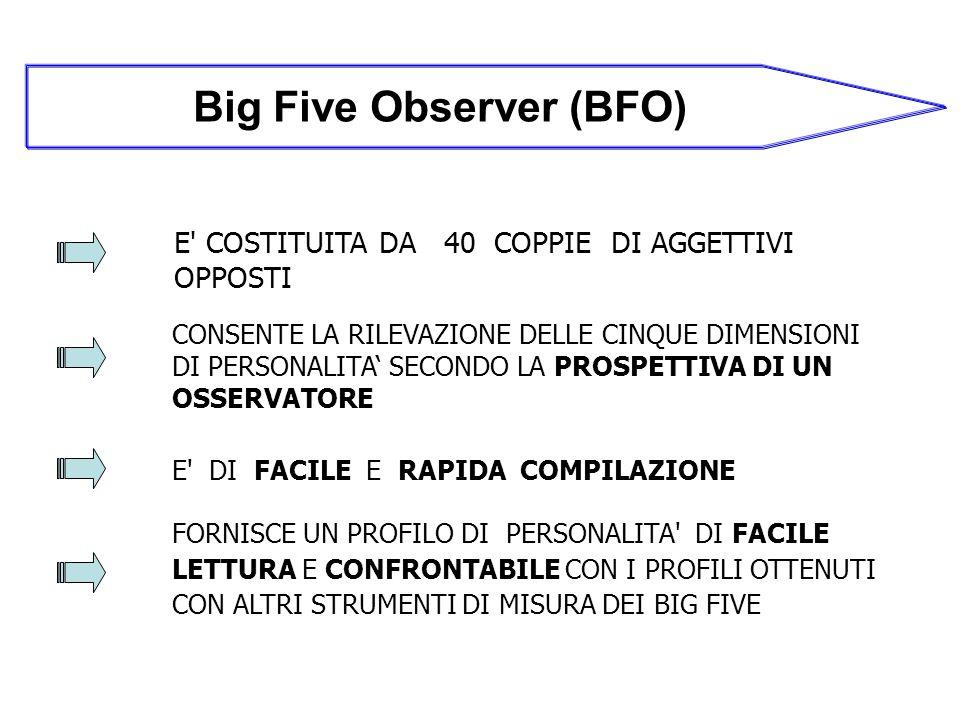 Big Five Observer (BFO)