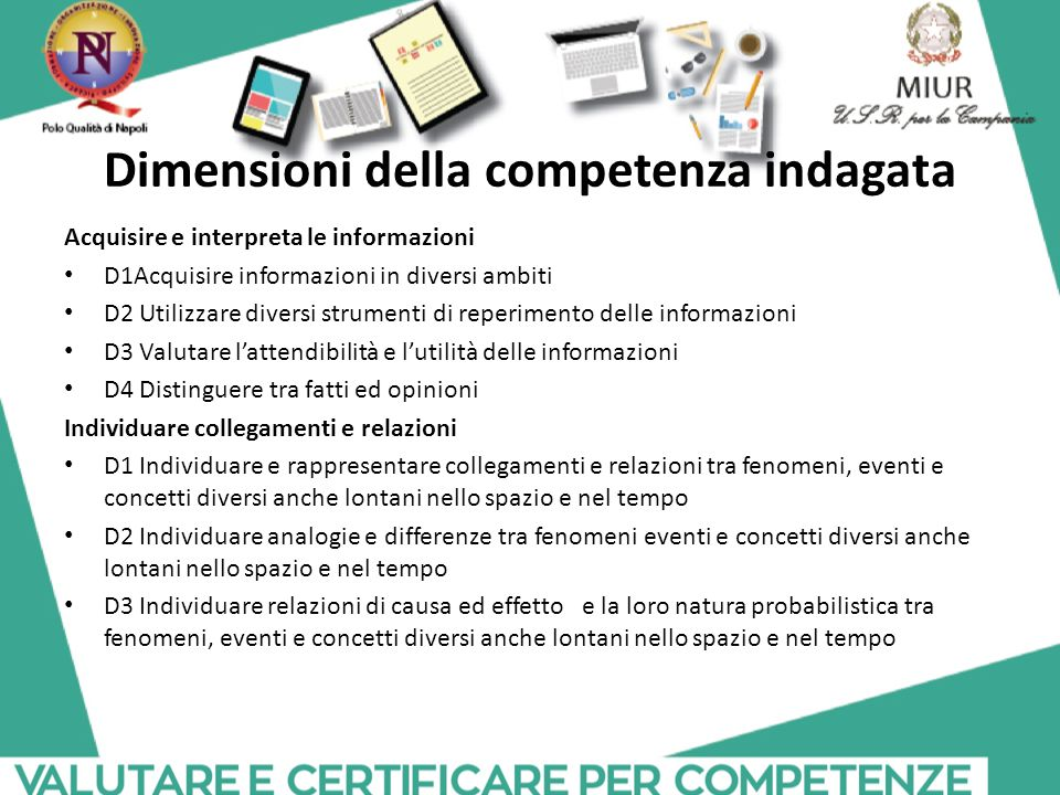 Dimensioni della competenza indagata