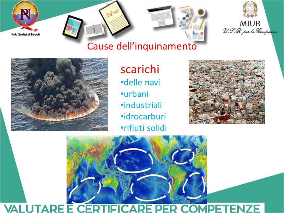 Cause dell'inquinamento
