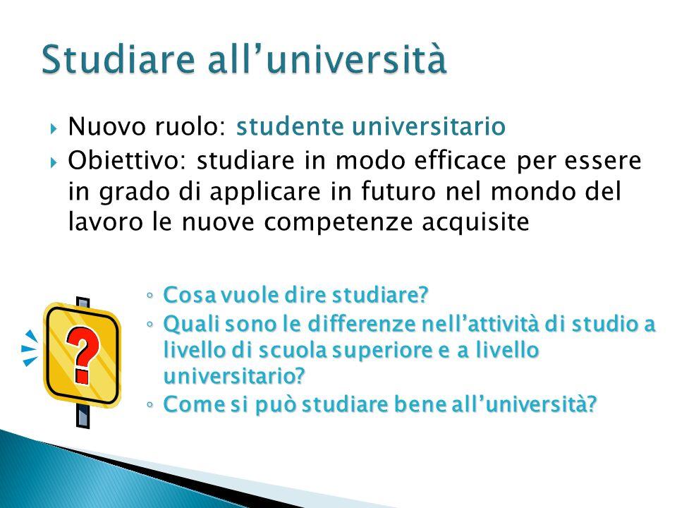 Studiare all'università