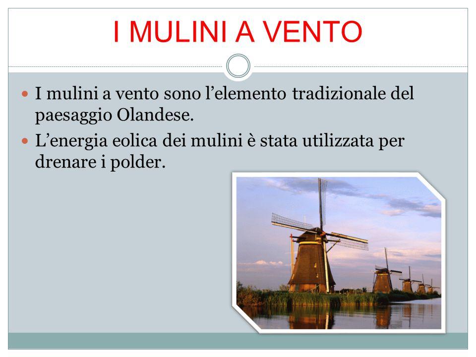 I MULINI A VENTO I mulini a vento sono l'elemento tradizionale del paesaggio Olandese.