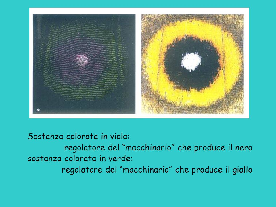 Sostanza colorata in viola: