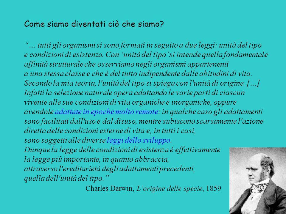 Charles Darwin, L'origine delle specie, 1859