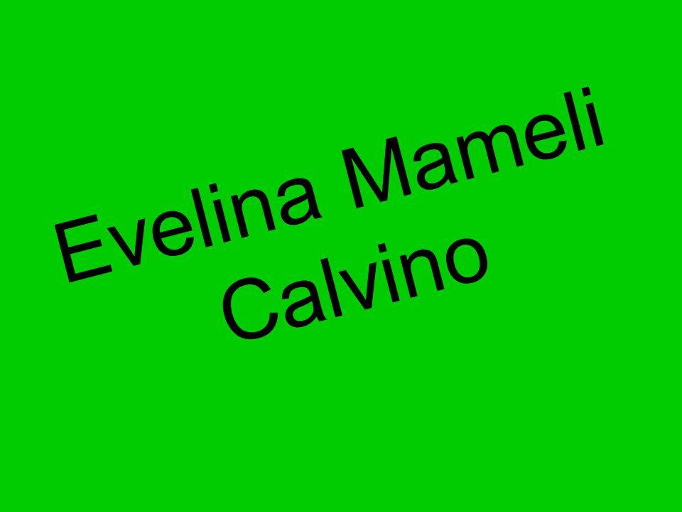 Evelina Mameli Calvino