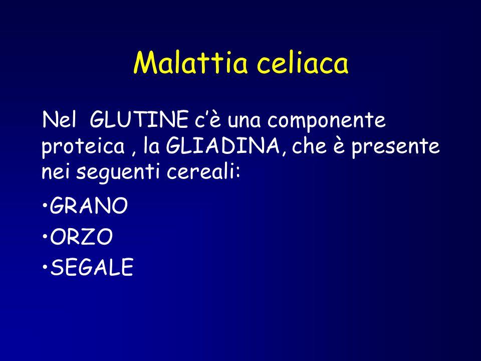 Malattia celiaca Nel GLUTINE c'è una componente proteica , la GLIADINA, che è presente nei seguenti cereali: