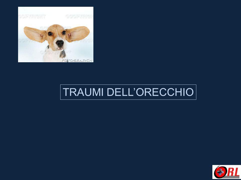 TRAUMI DELL'ORECCHIO