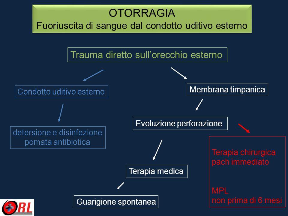 OTORRAGIA Fuoriuscita di sangue dal condotto uditivo esterno