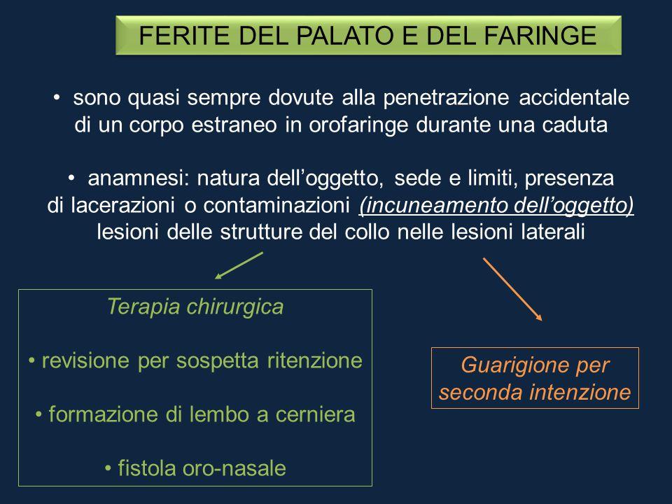 FERITE DEL PALATO E DEL FARINGE