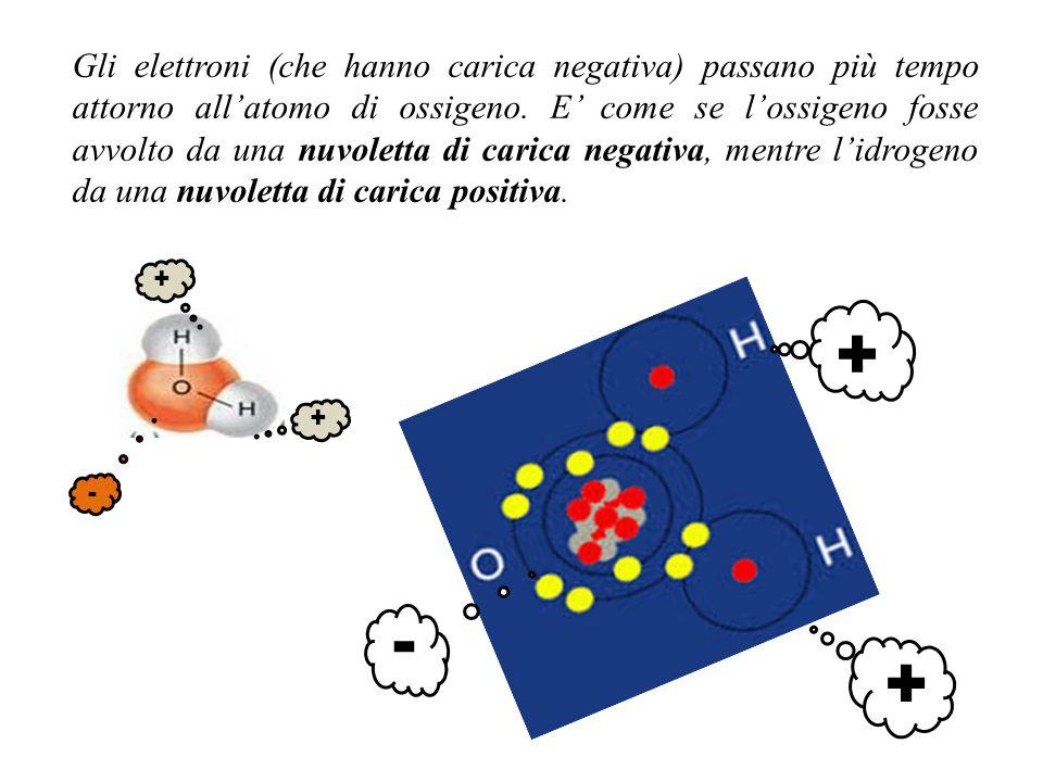 Gli elettroni (che hanno carica negativa) passano più tempo attorno all'atomo di ossigeno. E' come se l'ossigeno fosse avvolto da una nuvoletta di carica negativa, mentre l'idrogeno da una nuvoletta di carica positiva.
