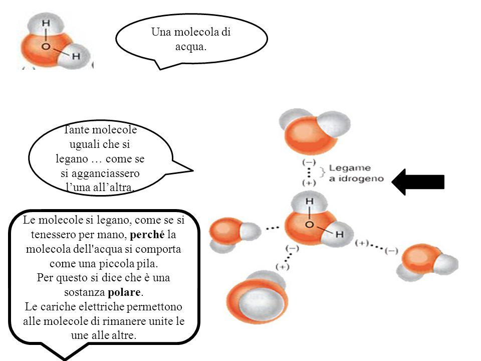 Una molecola di acqua. Tante molecole uguali che si legano … come se si agganciassero l'una all'altra.