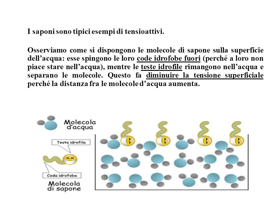 I saponi sono tipici esempi di tensioattivi.