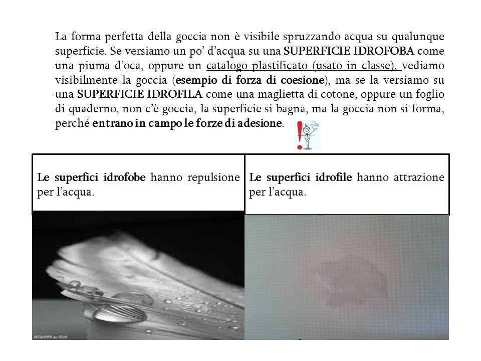 La forma perfetta della goccia non è visibile spruzzando acqua su qualunque superficie. Se versiamo un po' d'acqua su una SUPERFICIE IDROFOBA come una piuma d'oca, oppure un catalogo plastificato (usato in classe), vediamo visibilmente la goccia (esempio di forza di coesione), ma se la versiamo su una SUPERFICIE IDROFILA come una maglietta di cotone, oppure un foglio di quaderno, non c'è goccia, la superficie si bagna, ma la goccia non si forma, perché entrano in campo le forze di adesione.