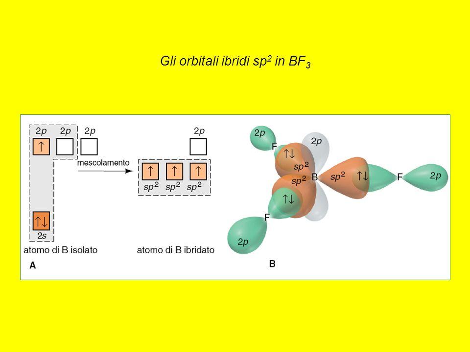 Gli orbitali ibridi sp2 in BF3