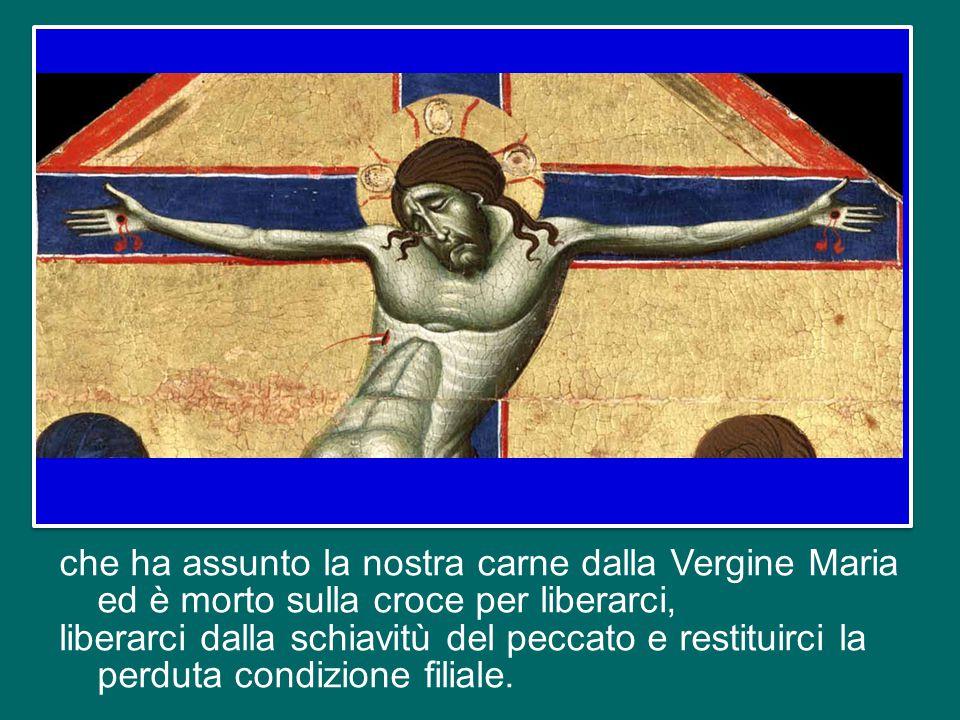 che ha assunto la nostra carne dalla Vergine Maria ed è morto sulla croce per liberarci, liberarci dalla schiavitù del peccato e restituirci la perduta condizione filiale.