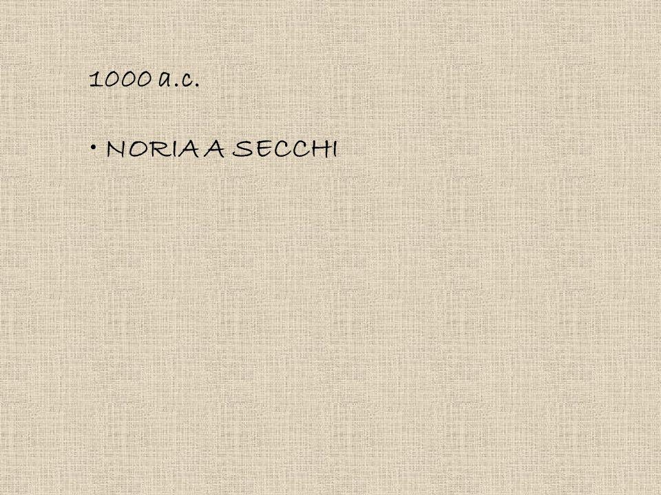 1000 a.c. NORIA A SECCHI