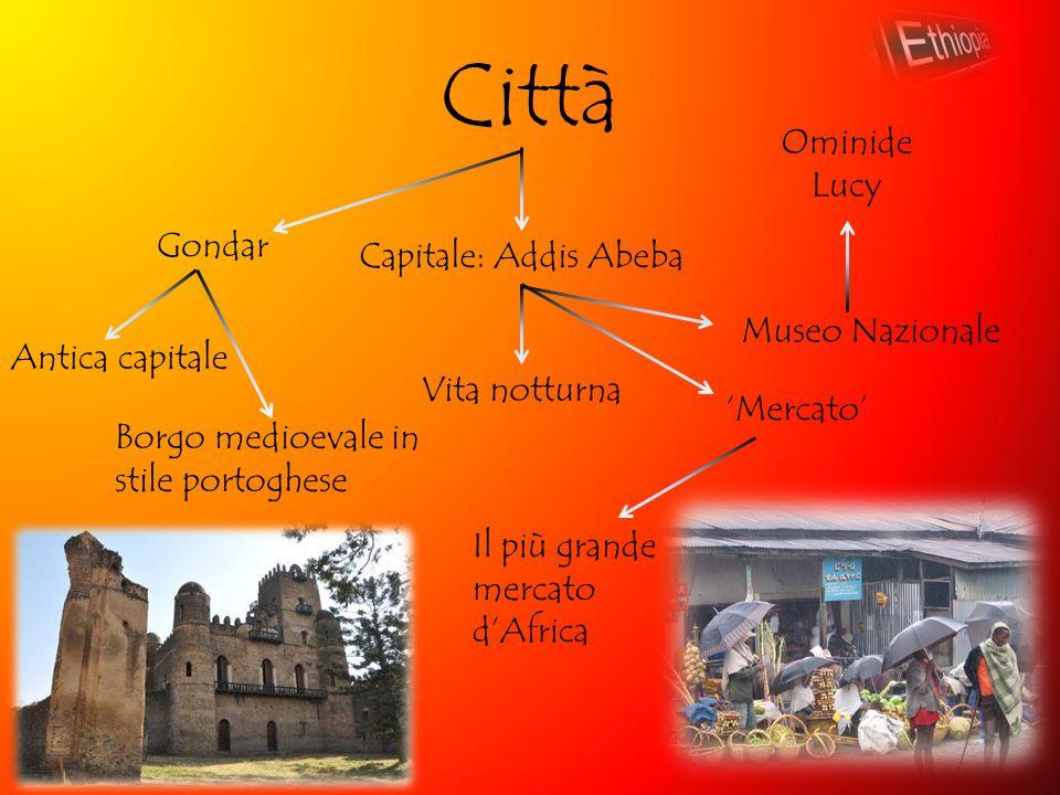 Città Ominide Lucy Gondar Capitale: Addis Abeba Museo Nazionale