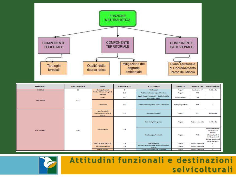 Attitudini funzionali e destinazioni selvicolturali