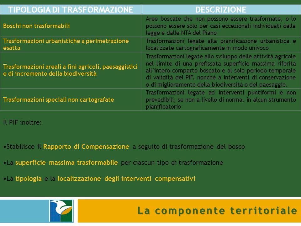 TIPOLOGIA DI TRASFORMAZIONE