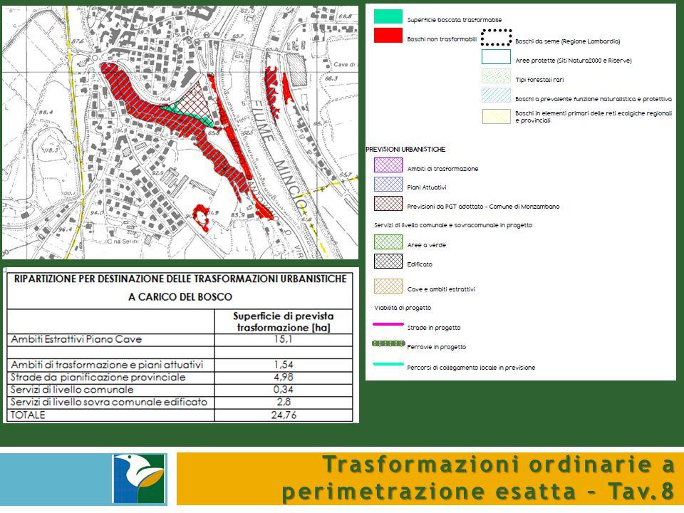 Trasformazioni ordinarie a perimetrazione esatta – Tav.8