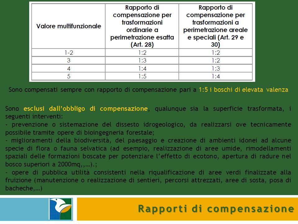 Rapporti di compensazione