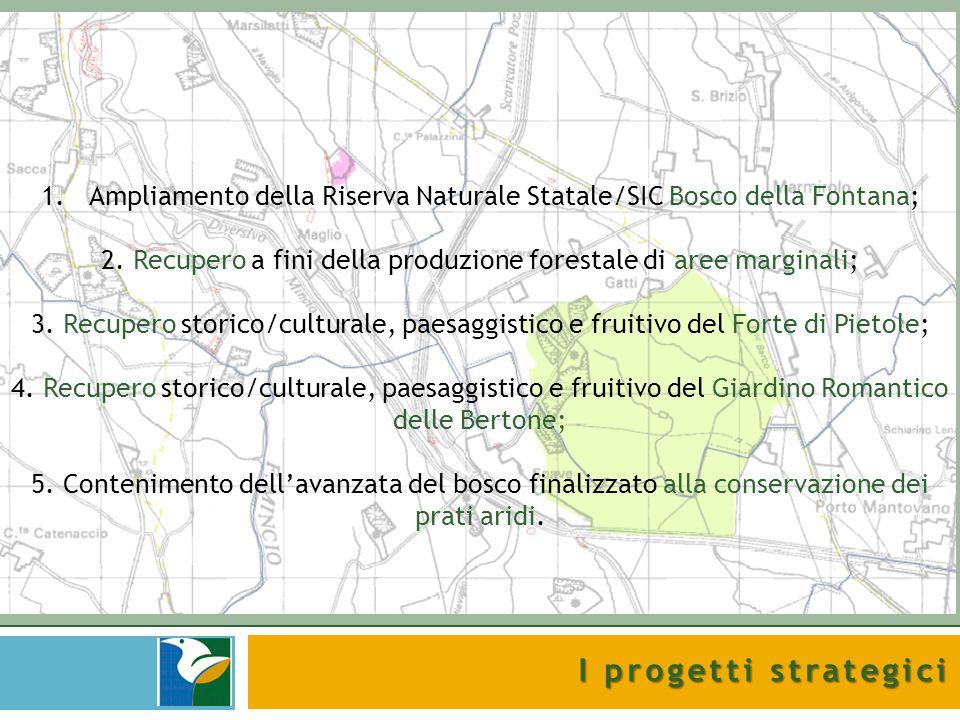 Ampliamento della Riserva Naturale Statale/SIC Bosco della Fontana;