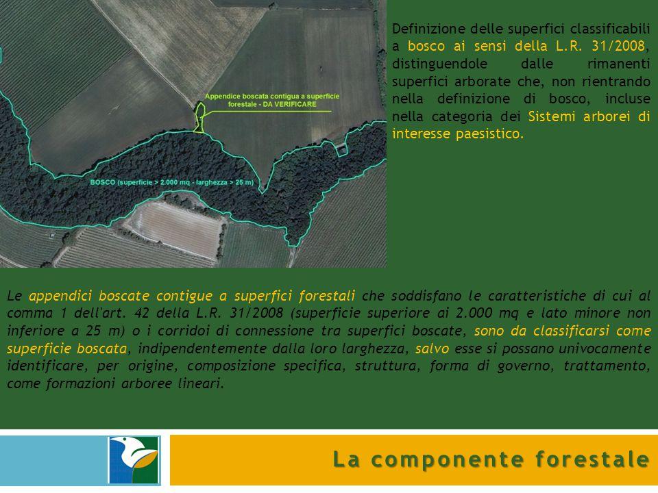 La componente forestale