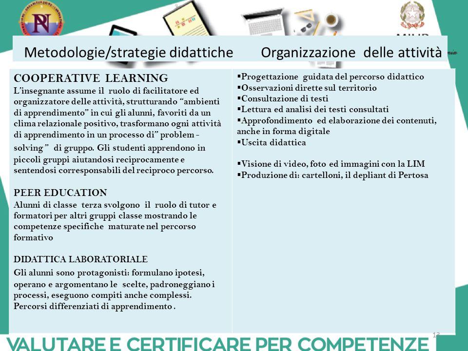 Metodologie/strategie didattiche Organizzazione delle attività