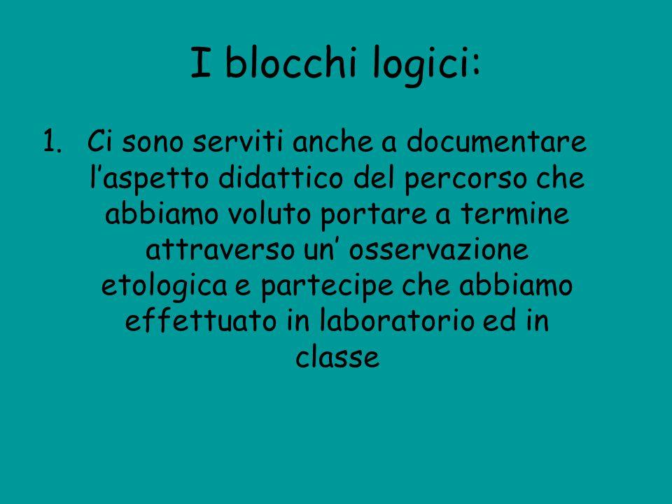 I blocchi logici: