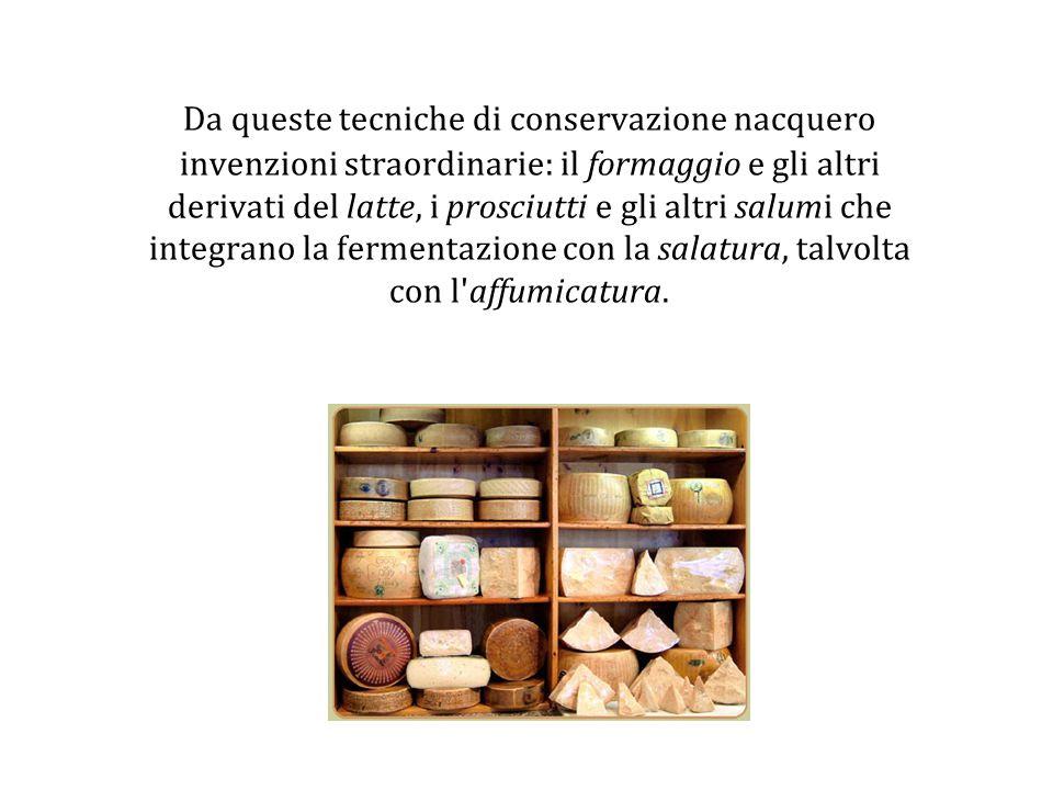 Da queste tecniche di conservazione nacquero invenzioni straordinarie: il formaggio e gli altri derivati del latte, i prosciutti e gli altri salumi che integrano la fermentazione con la salatura, talvolta con l affumicatura.