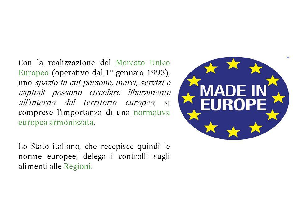 Con la realizzazione del Mercato Unico Europeo (operativo dal 1° gennaio 1993), uno spazio in cui persone, merci, servizi e capitali possono circolare liberamente all'interno del territorio europeo, si comprese l'importanza di una normativa europea armonizzata.