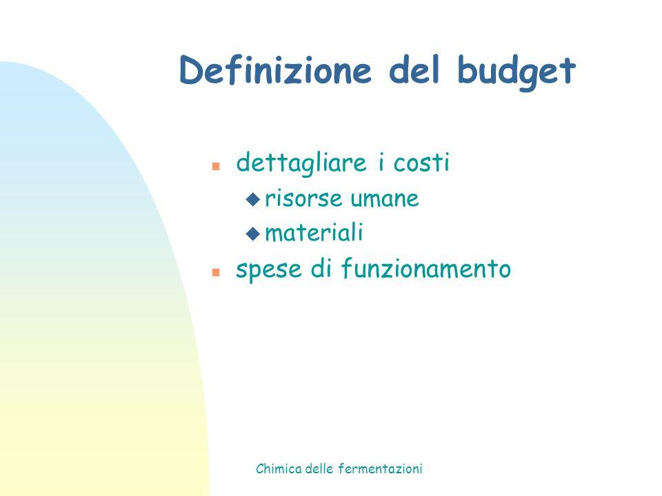 Definizione del budget