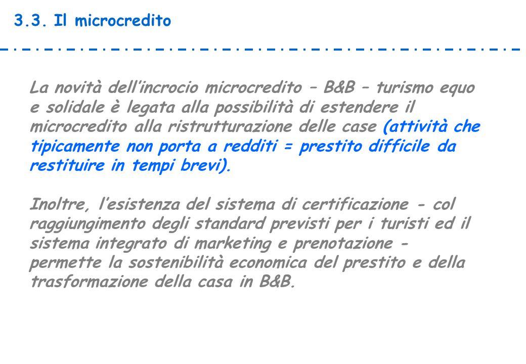 3.3. Il microcredito