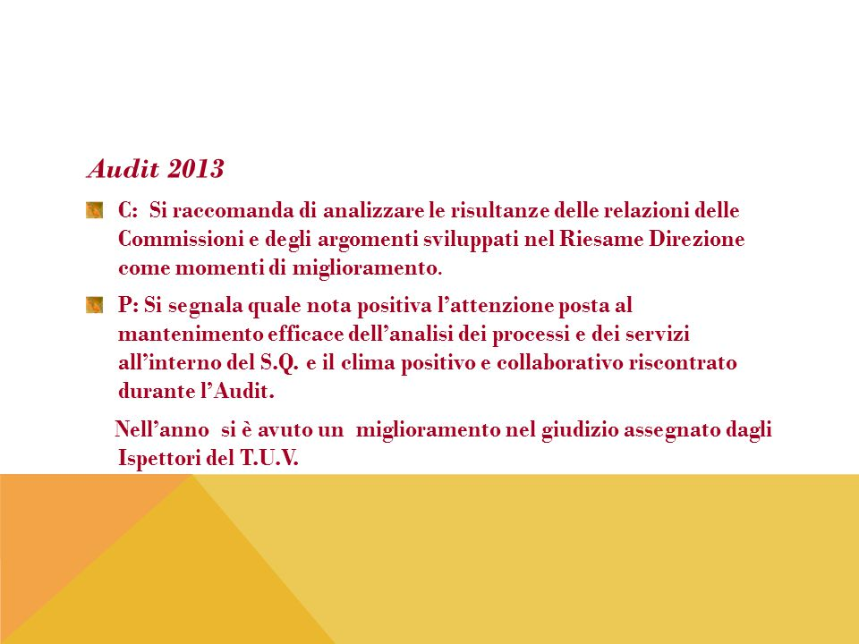 Audit 2013