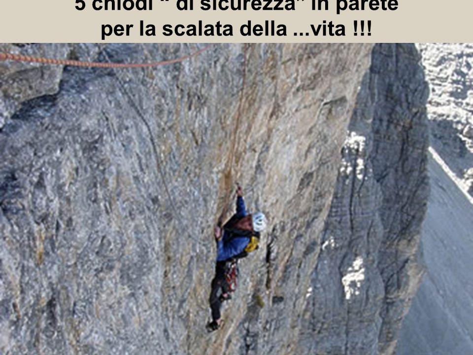 5 chiodi di sicurezza in parete per la scalata della ...vita !!!