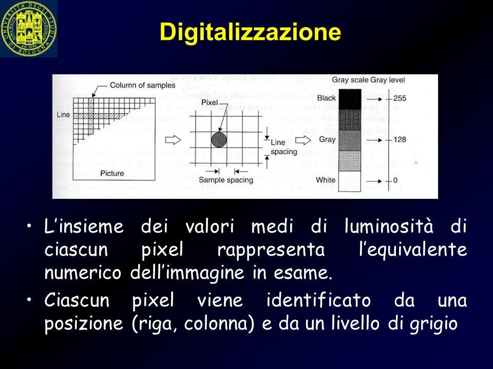 Digitalizzazione L'insieme dei valori medi di luminosità di ciascun pixel rappresenta l'equivalente numerico dell'immagine in esame.