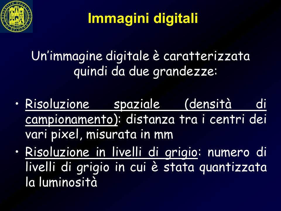 Un'immagine digitale è caratterizzata quindi da due grandezze: