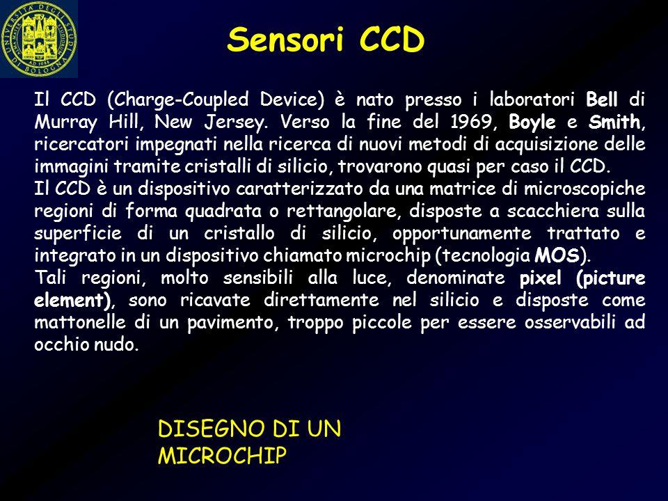 Sensori CCD DISEGNO DI UN MICROCHIP