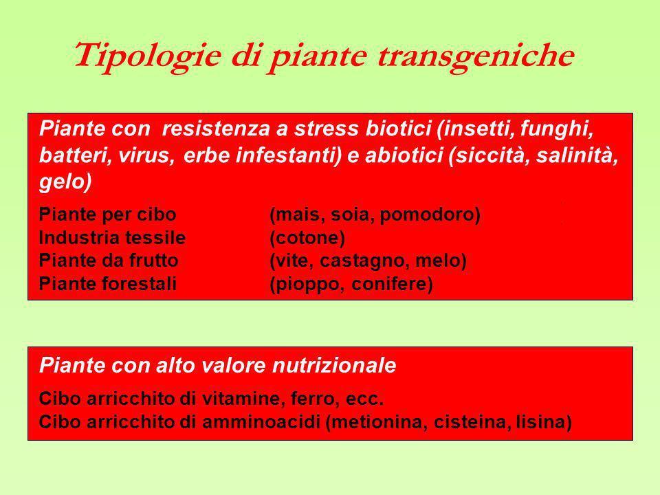 Tipologie di piante transgeniche
