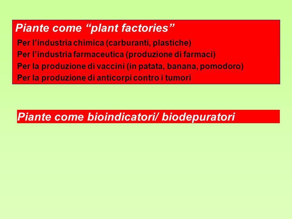 Piante come plant factories