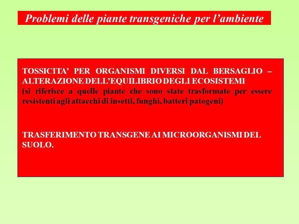 Problemi delle piante transgeniche per l'ambiente