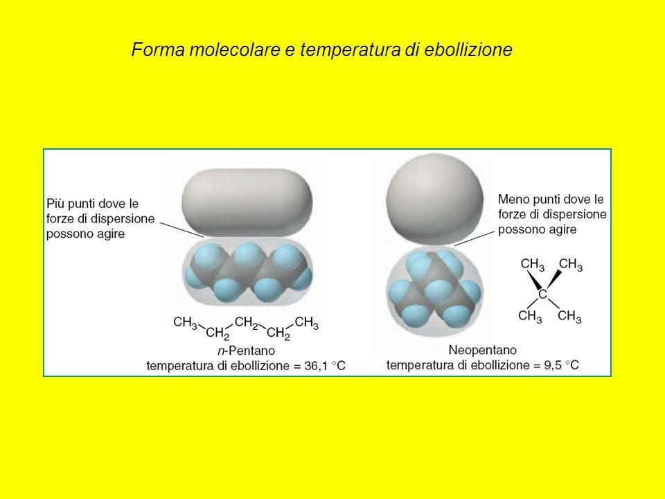 Forma molecolare e temperatura di ebollizione